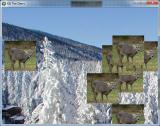 deerhunting.png