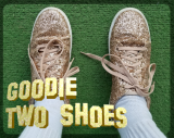 goodie2shoesPromo.png