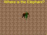 whereistheelephant.jpg