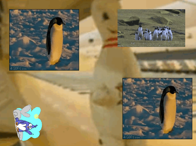 2015-11-27 20_07_52-Spin Spinner 6_ Penguin Edition.png