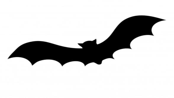 bat-silhouette-for-halloween.png