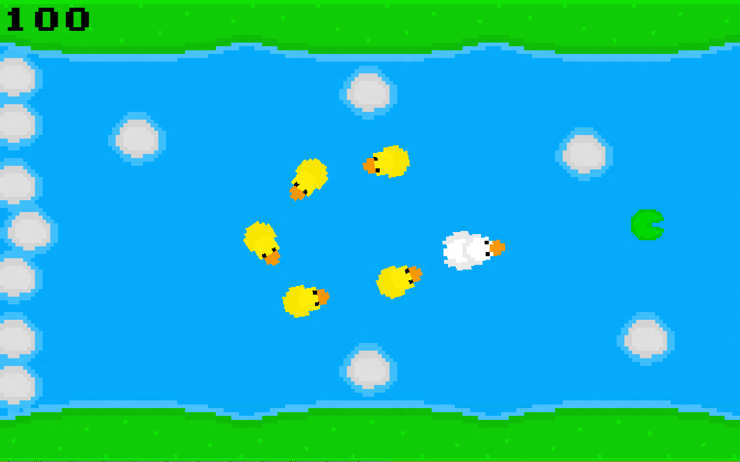 ducks.png